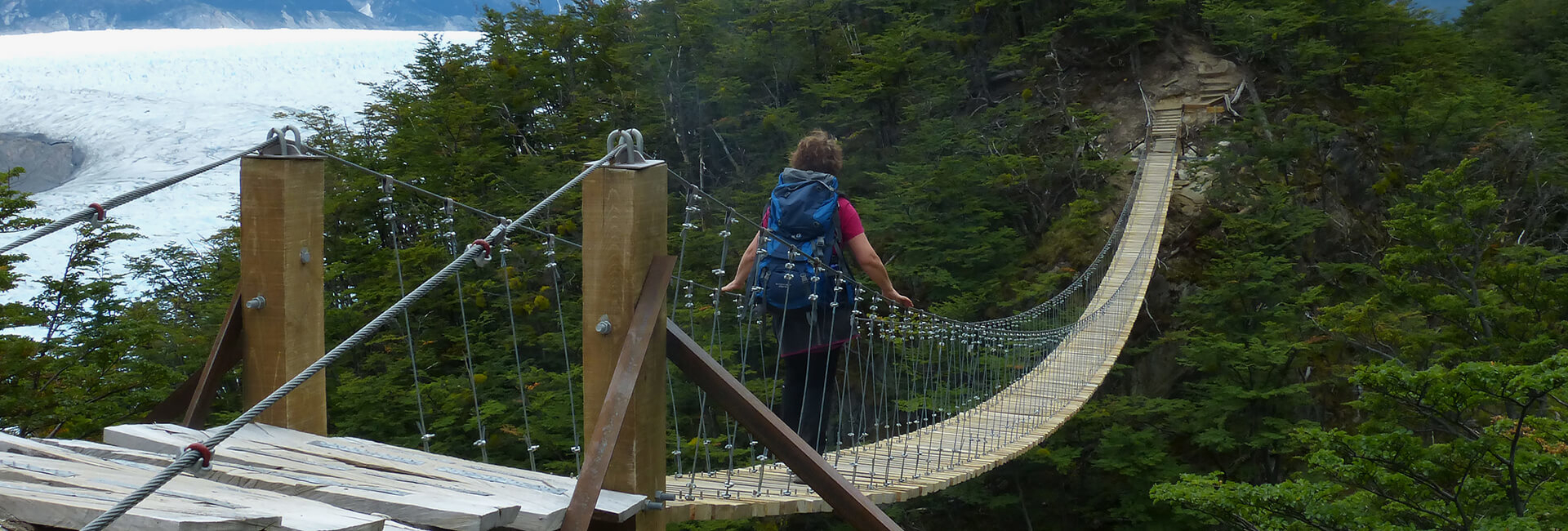 Suspension bridge & Grey Glacier, Torres del Paine Hike